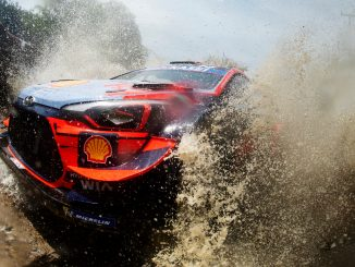 Тиери Ньовил рали Мексико - Rally Mexico Tierrhy Neuville